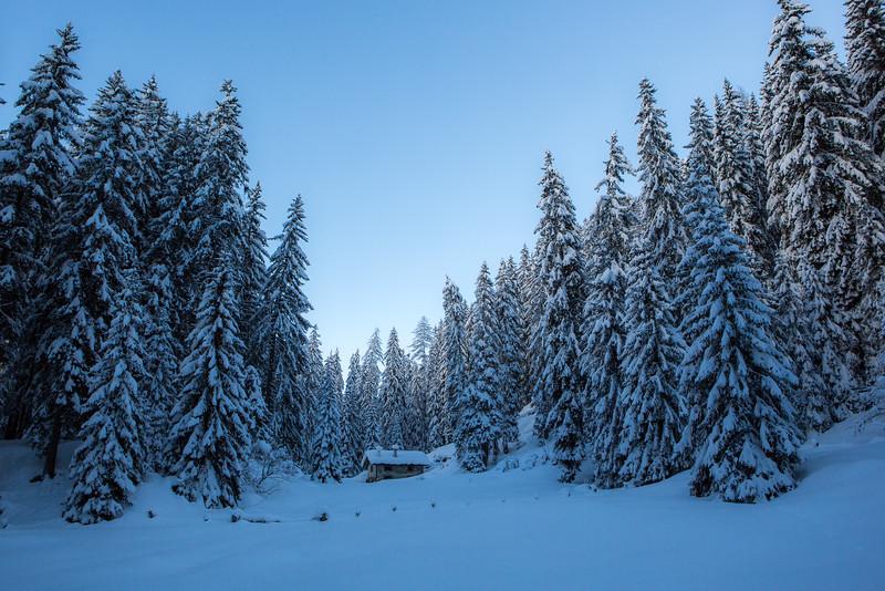 Rheinwald-Winter-D-Aebli-057.jpg