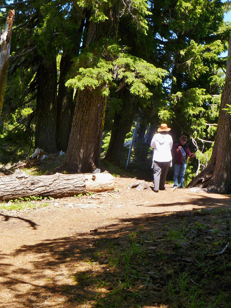 Walking the Rim Trail