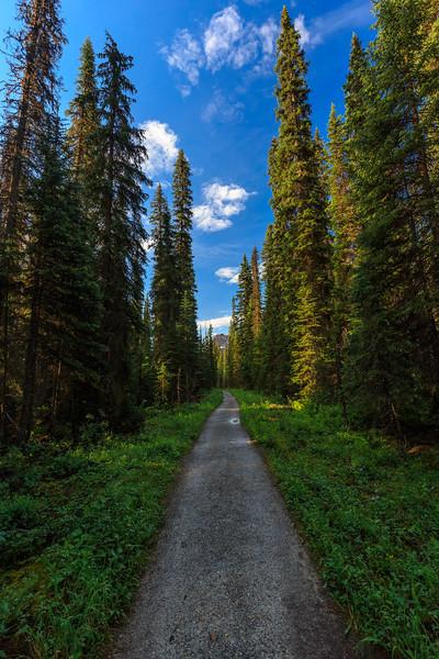 Yoho Valley Trail