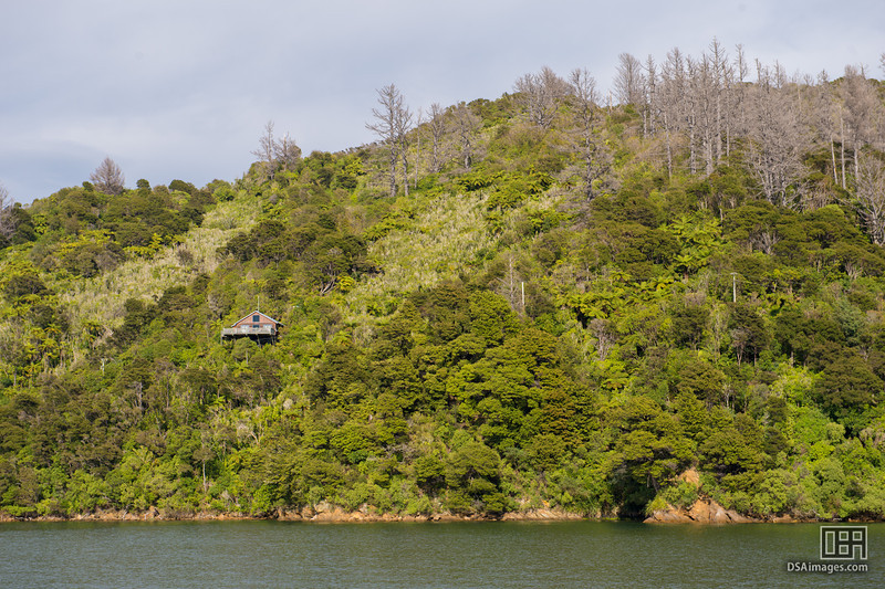 Home overlooking Lochmara Bay