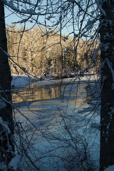 winter 2015-9842.jpg