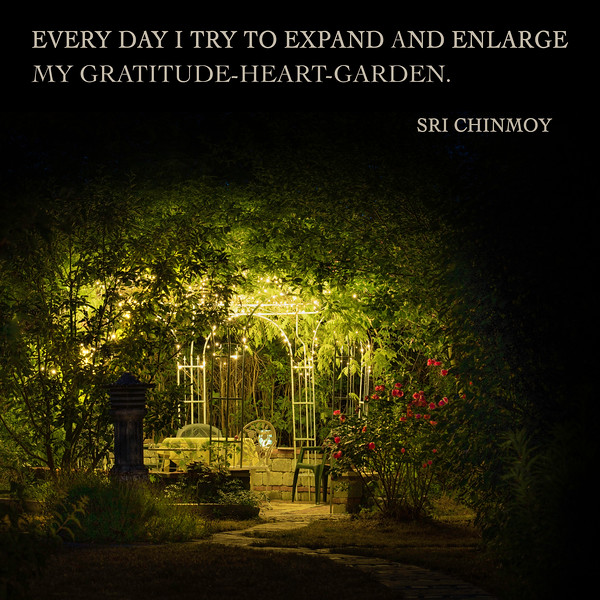 gratitude-garden.jpg
