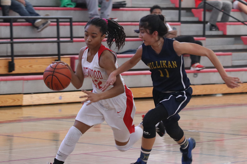 2019 Girls FroshSoph B-Ball-41.jpg