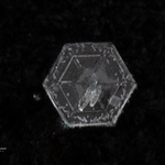 snowflakes-1587.jpg