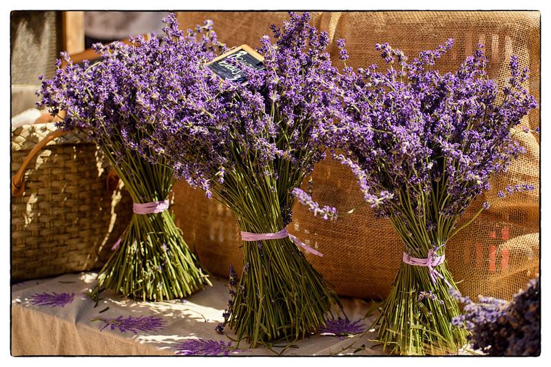 lavender trio.jpg