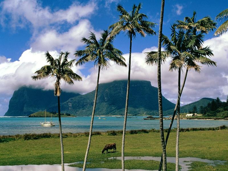 Lord Howe Island, Australia.jpg