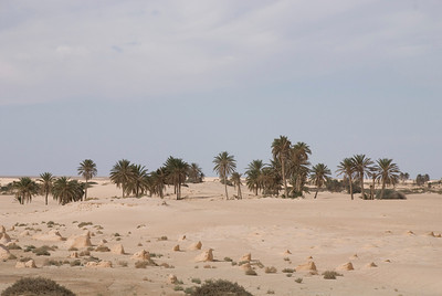 Tunisian desert & countryside
