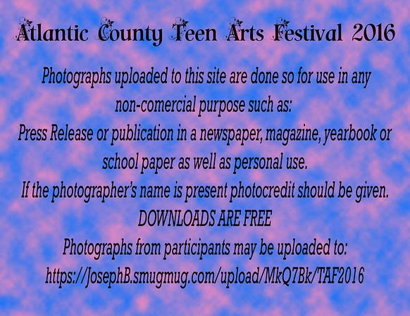 2016 Teen Arts Festival