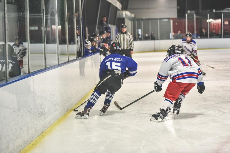 Leafs-30.jpg