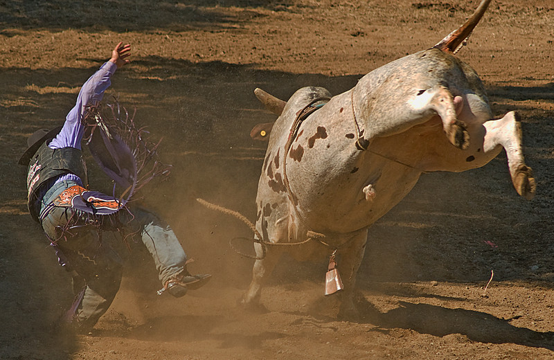 COOMBS RODEO-2009-3773A.jpg