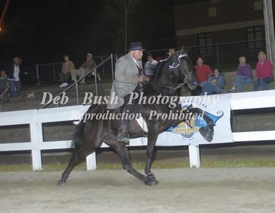 CLASS 32 OPEN WALKING HORSE SPEC