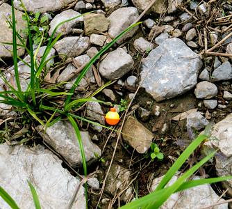 Boneyard Lake 2015-04-07