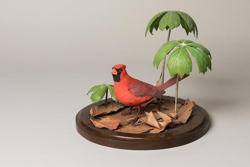 Still Life Dan Holman Birds (11 of 50).jpg