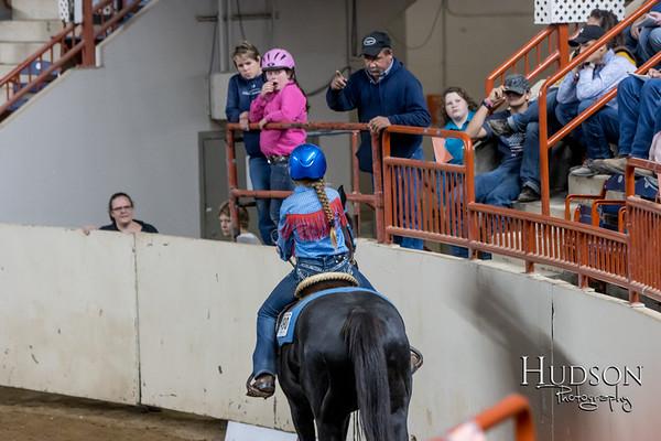 35 Keyhole Horse Jr