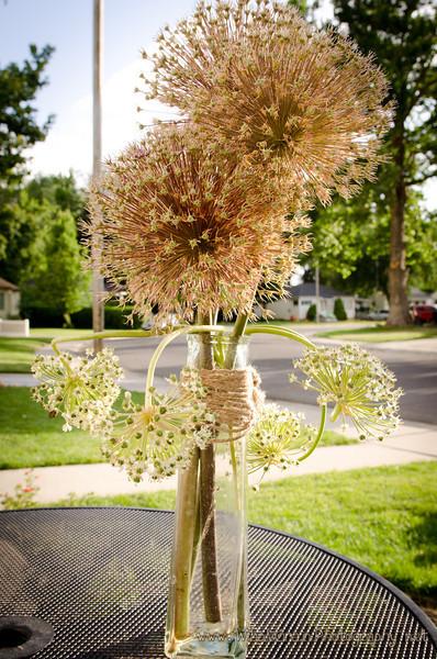 20120605_Garden_0002.jpg