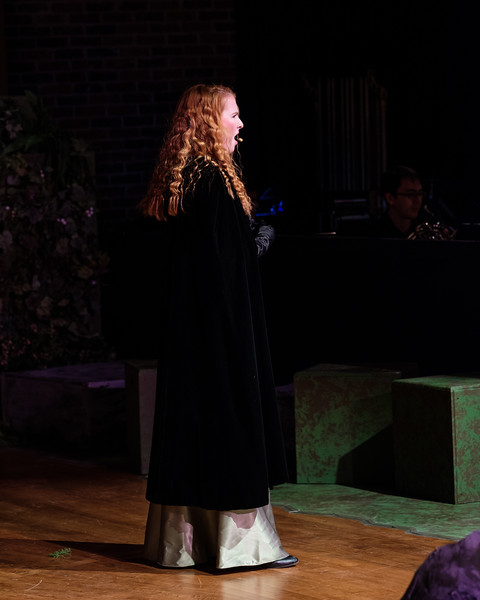 2018-03 Into the Woods Performance 0736.jpg