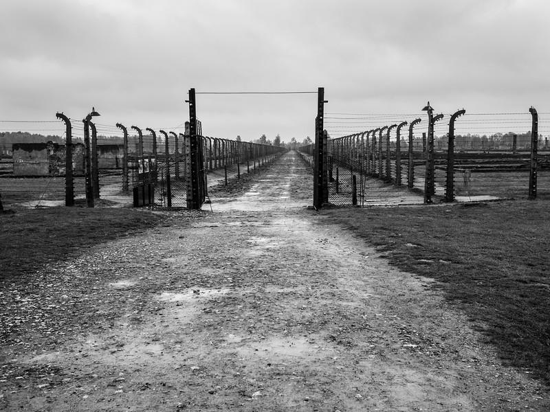 Auschwitz-Birkenau-23.jpg
