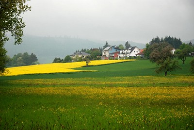 Odenwald driedaagse mei 2010: dag 2