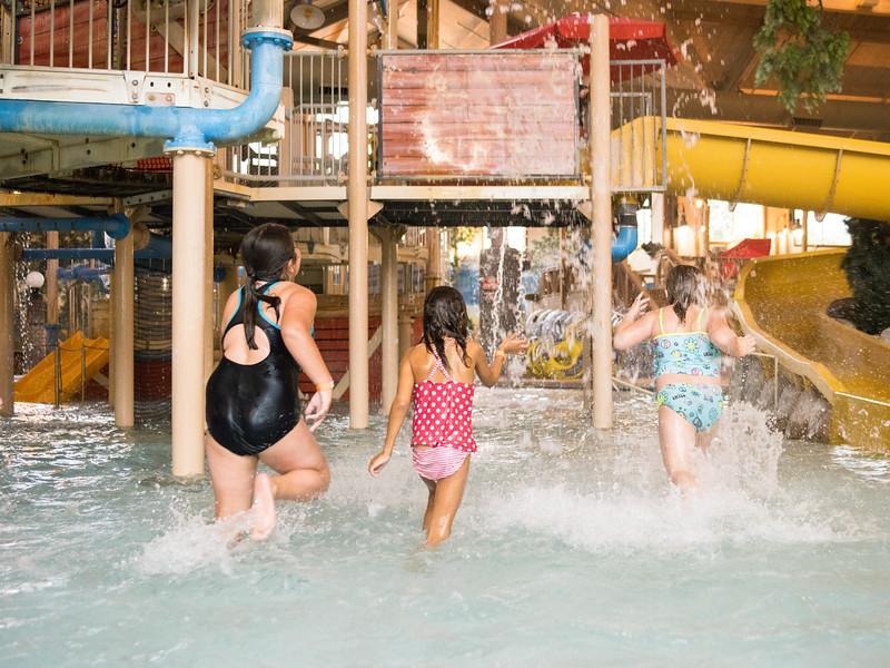Country_Springs_Waterpark_Kennel-4604.jpg