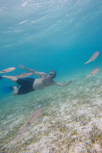 Caribbean: Day 7 A