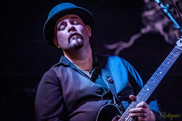 Damo Fawsett Band - Bluesfest 2014