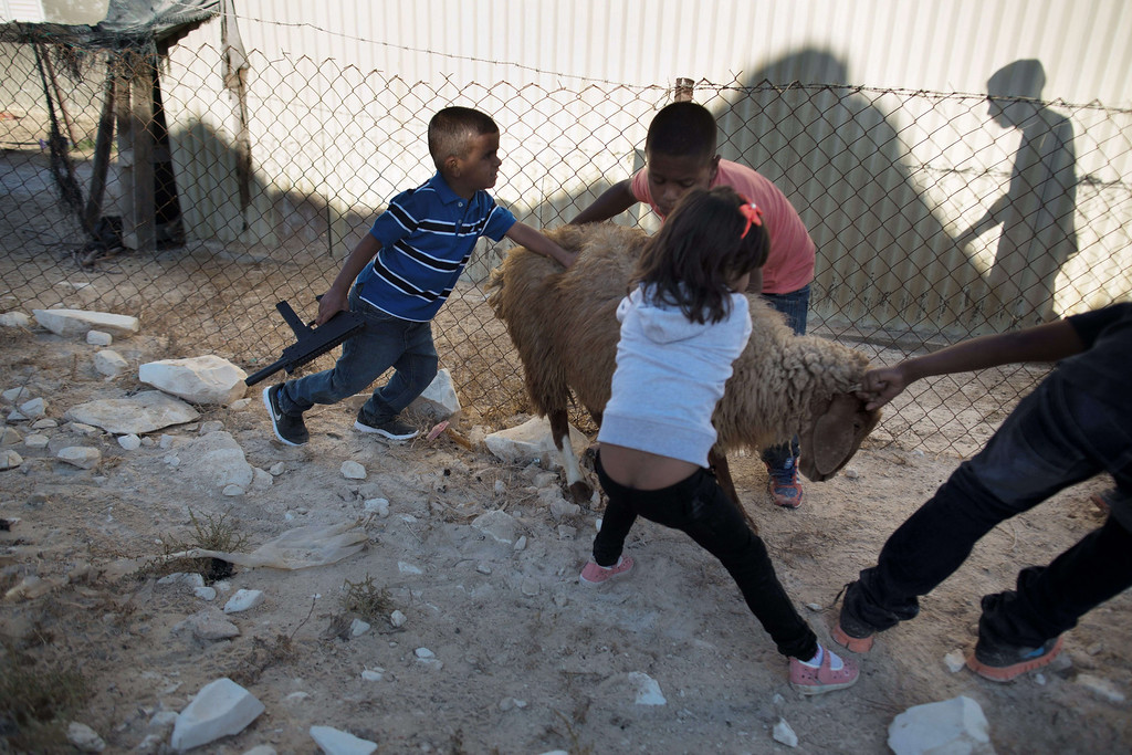 . Bedouin children from the Zanun family, who belong to the Azazme tribe, drag a sheep to slaughter on the first day of the Muslim feast of Eid al-Adha on October 15, 2013 in their village of Wadi Naam, currently unrecognized by Israeli authorities, near the southern city of Beersheva in the Israeli Negev desert.  AFP PHOTO/MENAHEM KAHANA/AFP/Getty Images