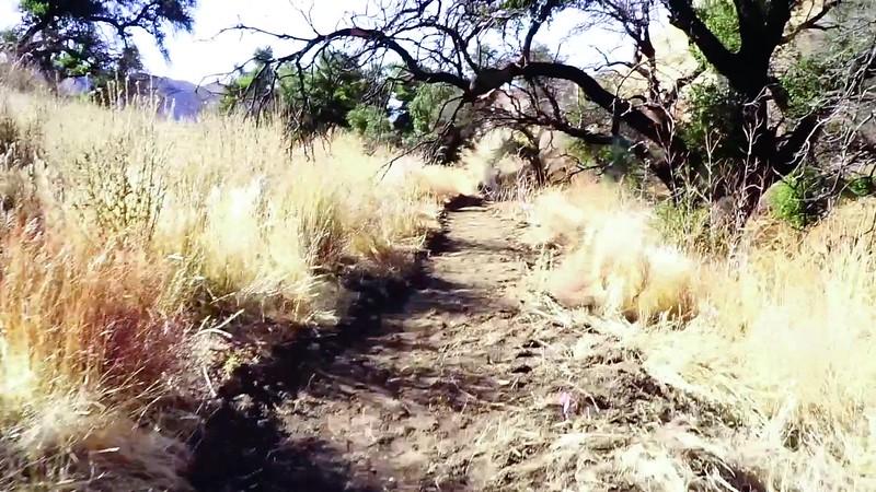 20181201035-Golden Valley Trailwork.mp4