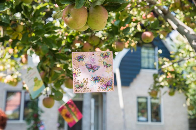 Kaartjes als troost in de appelboomgaard.