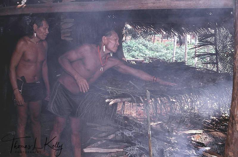 Kayapo men drying the Brazalian nuts which is used to make medicinal oil.Kayapo, Brazilian Amazon.