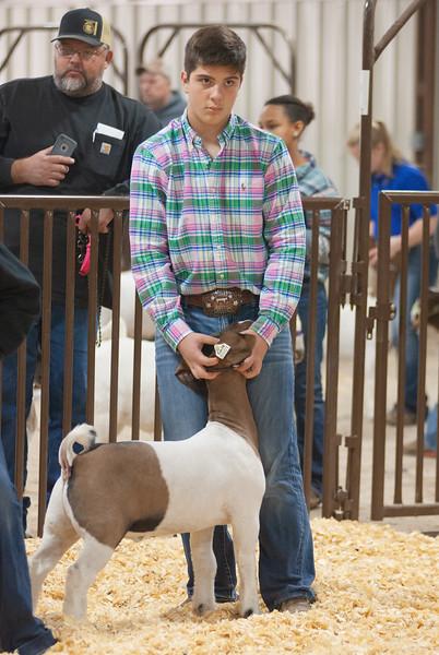 kay_county_showdown_goats_20191207-57.jpg
