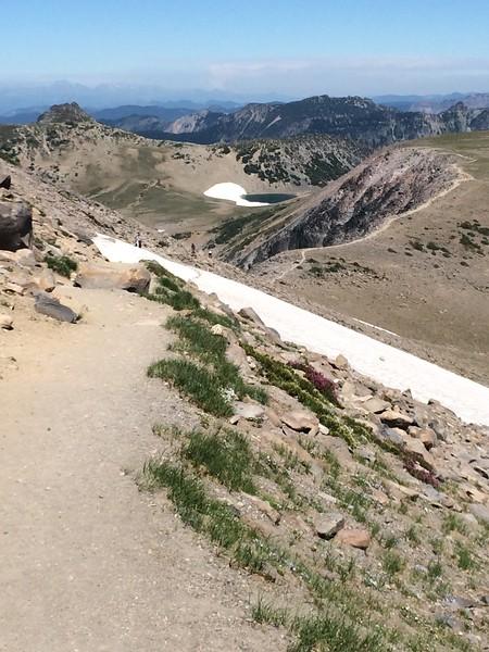 Burroughs Mountain Descent