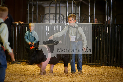 Swine Showmanship