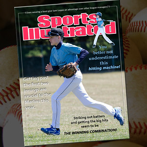SI Covers