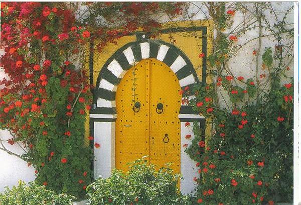 006_Tunisie_Porte_cloutee.jpg