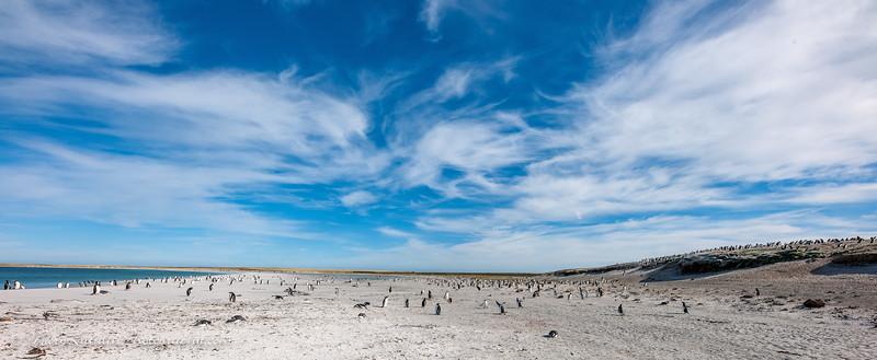 Antarctic-200