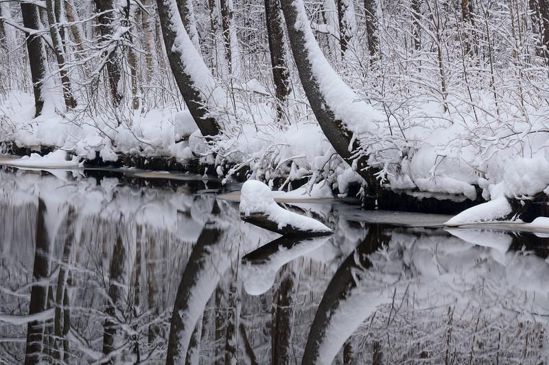 Mirror of winter