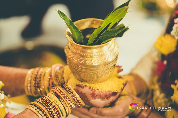 Sanja+Priya Wedding
