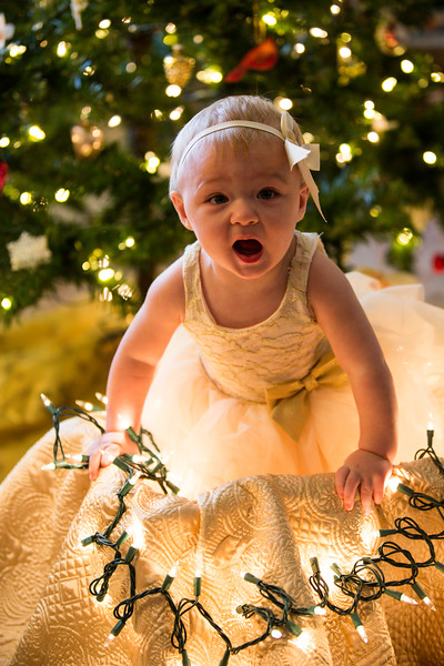 Leah Marie's First Christms 2018 (58).jpg