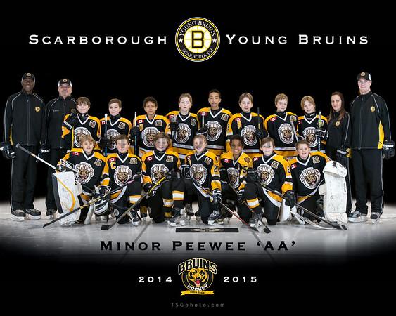 2014-15 SYB Minor Peewee 'AA'