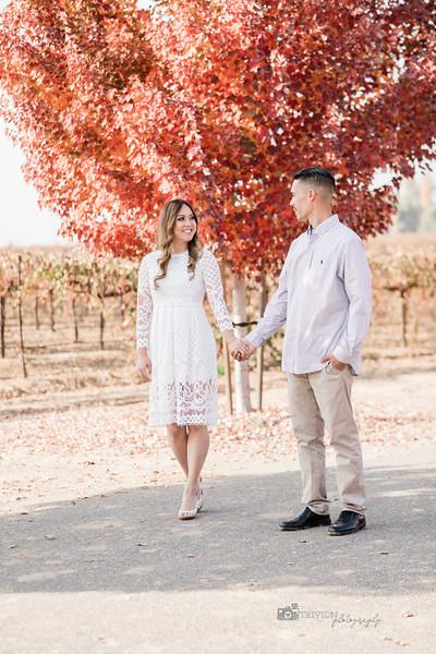 Engagement (28 of 30).jpg