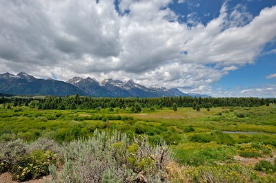 Plains in the Grand Teton national park, Wyoming, USA