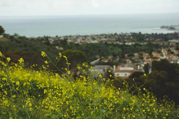 San Clemente Hike - 2.28.15