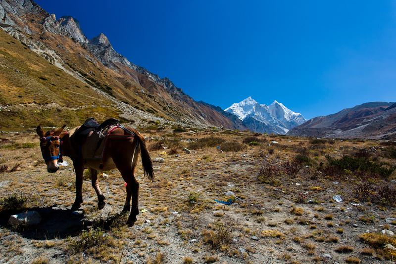 Himalayas 336.jpg