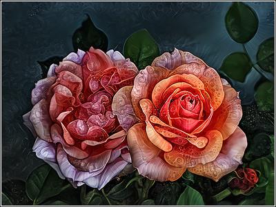 Roses Orange Fantasy
