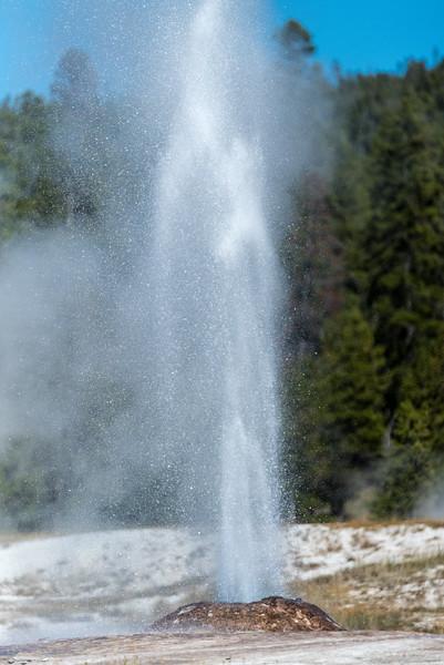 firehole-lake-drive-5.jpg
