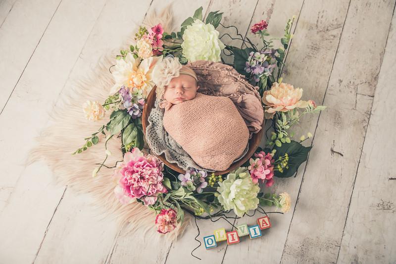 rockford_newborn_photography_O008.jpg