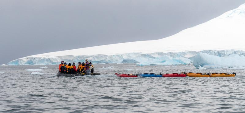 Kayaking_Paradise Harbor_Antarctica-1.jpg