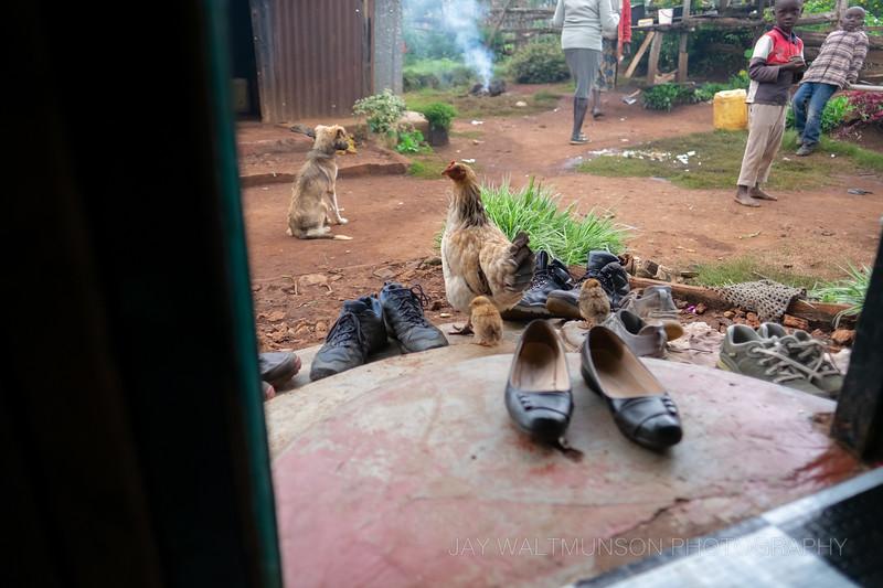Jay Waltmunson Photography - Kenya 2019 - 034 - (DXT12453).jpg