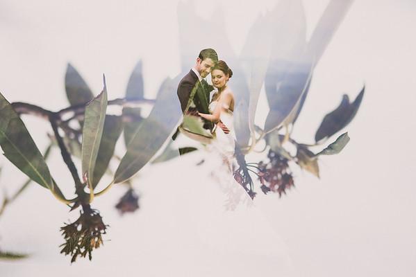 Steury Wedding