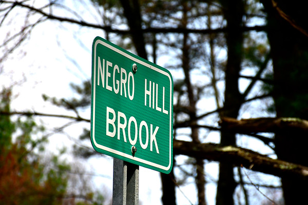 4/19/2019 Mike Orazzi | Staff Burlington and Bristol are petitioning the federal government to change the name of Negro Hill Brook off Route 69.